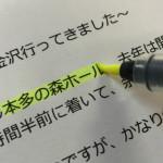 掘り出し物の蛍光ペン(ZIG Check Pen Brush)